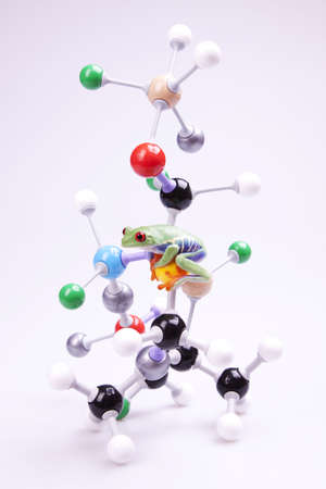 Molecular chain model photo