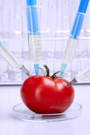 Laboratory fruits photo