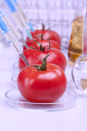 modify: Fruits and genetic modifications