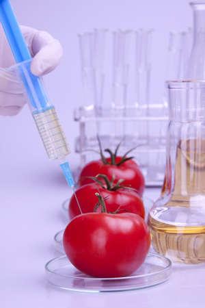 modificaci�n: Modificaci�n gen�tica de frutos