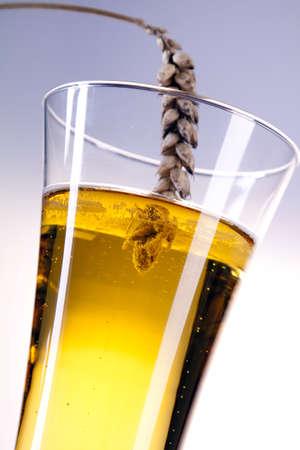 beer concept! Stock Photo - 7683672