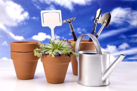 Flowers and garden tools Stock Photo - 13812840