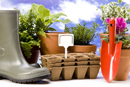 Flowers and garden tools Stock Photo - 13812883