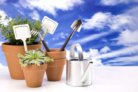 Flowers and garden tools isolated on white backgroud photo