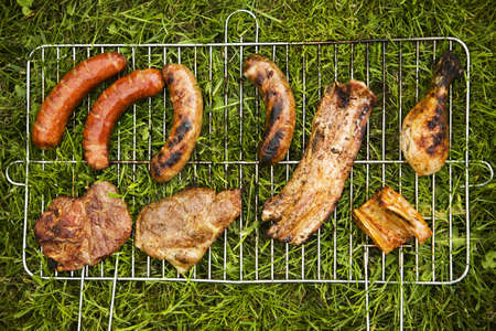 Meat on grass  photo
