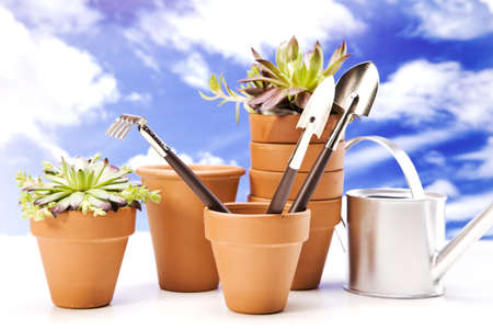 Flowers and garden tools on sky backgroud photo