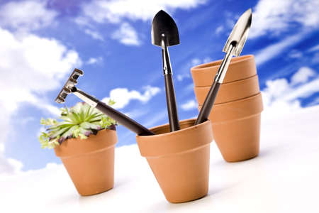 Flowers and garden tools Stock Photo - 13798077