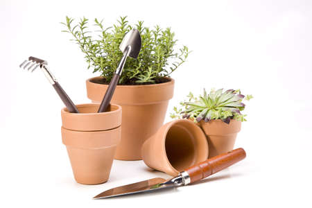 Flowers and garden tools Stock Photo - 13798051