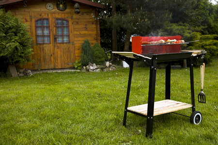 Barbeque in the garden, really tasty dinner Archivio Fotografico