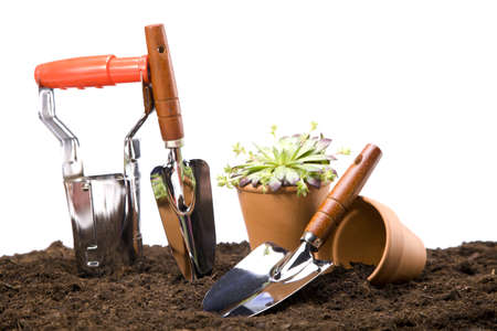 Flowers and garden tools isolated on white backgroud Stock Photo - 13798065