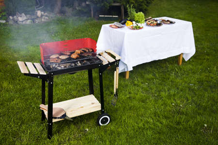 Barbeque in the garden, really tasty dinner  Stock Photo - 13798315