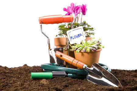 Flowers and garden tools isolated on white backgroud Stock Photo - 13798078