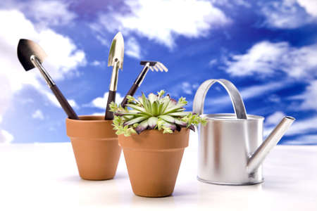 Flowers and garden tools isolated on sky backgroud Stock Photo - 13798075
