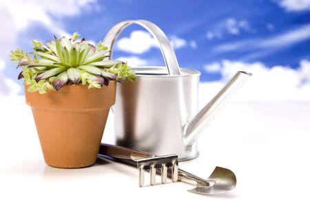 Flowers and garden tools on sky background Stock Photo - 13798058