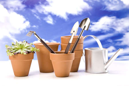 Flowers and garden tools on sky background Stock Photo - 13798071