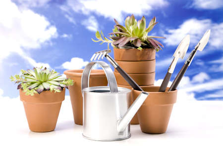 Flowers and garden tools on sky background Stock Photo - 13798069