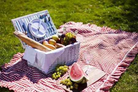 canastas de frutas: Picnic Time Backer con la comida en el jard�n Foto de archivo