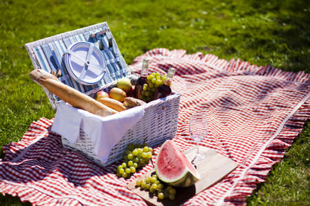 fruits in a basket: Picnic Time  Backer with food in garden