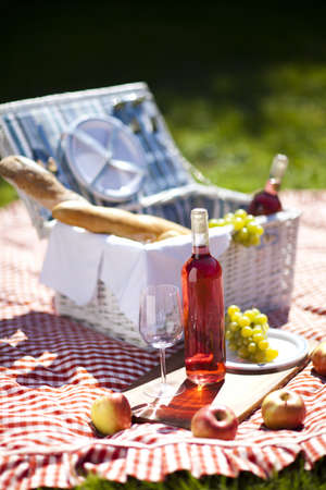 Picnic Time  Backer with food in garden Stock Photo - 15245356