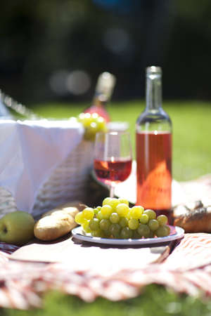 picnic food: Picnic Time  Backer with food in garden