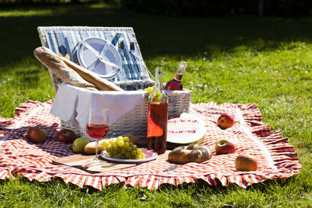 Picnic Time  Backer with food in garden  photo