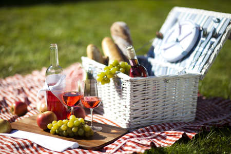Picnic Time  Backer with food in garden Фото со стока - 15245363