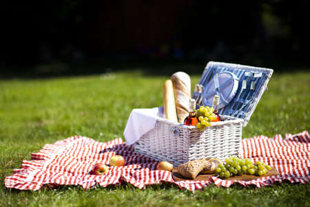 summer picnic: Picnic Time  Backer with food in garden