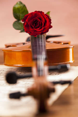 Violin, music, love and extasy  Everything for valentines Stock Photo - 16209676