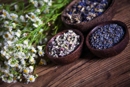 The ancient Chinese medicine, herbs and infusions photo