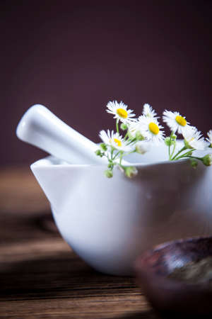 The ancient Chinese medicine, herbs and infusions. Natural flowers photo