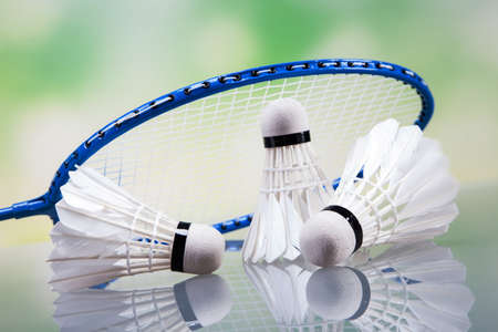 A set of badminton. Paddle and the shuttlecock. Studio shot Stock Photo