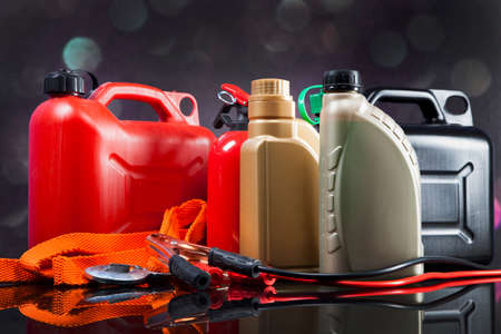 motor vehicle: Essential elements in any car. Bulbs, fluids and battery!