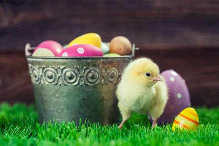 Wielkanoc z kurczaka, jajka i dekoracji w klasycznym sytle drewnianym tle