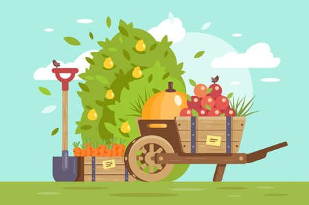 Flat fruits and vegetables, cart with apple, box with carrot and farm equipment, shovel. Concept agriculture, fresh food outdoors. illustration.