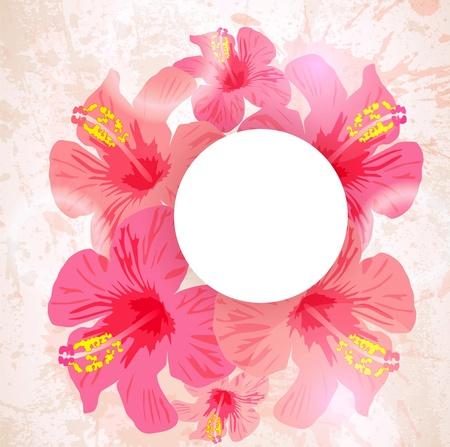 hula: Resumen de fondo tropical. Flor de hibisco para el dise�o. Vectores