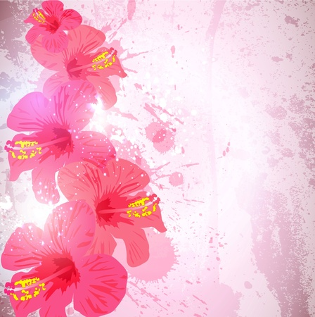 Abstract tropical background. Hibiscus flower for design. Vector