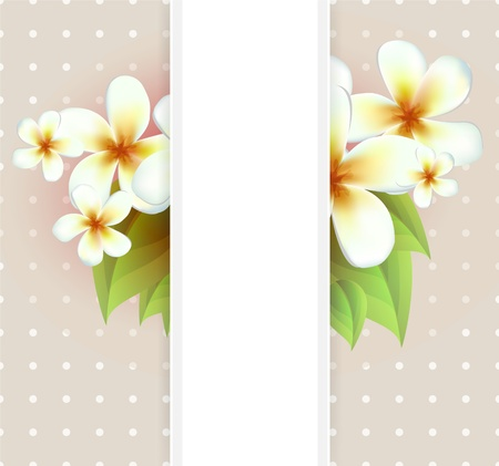 aristocratically: Vector flowers background