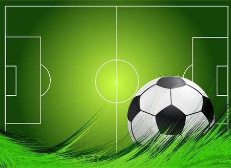 soccer fields: Soccer field