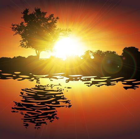 acacia: Beautiful sunrise . Vector illustration Illustration