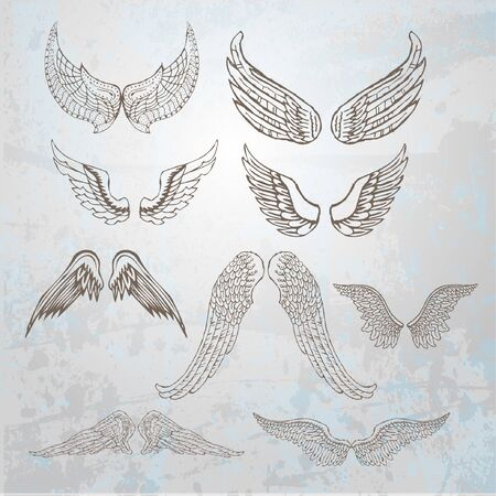 hand drawn wings: Wings set.  hand drawn illustration.