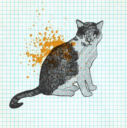 drawing: Cat drawing On a paper grunge background