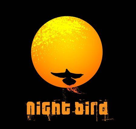 schein: night bird Illustration