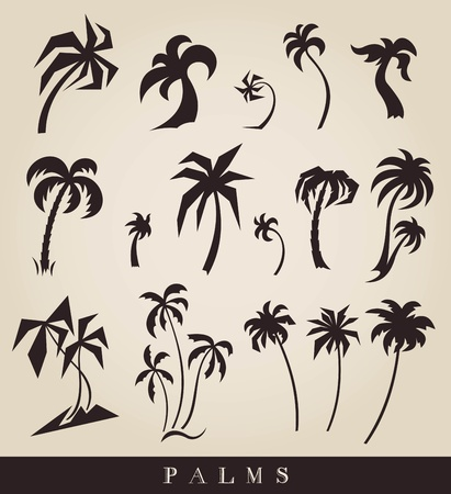 vector silhouettes of palm trees Vector