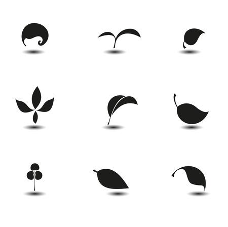 Hojas Ilustración de vector