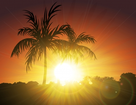 Palms on Sunset Vector