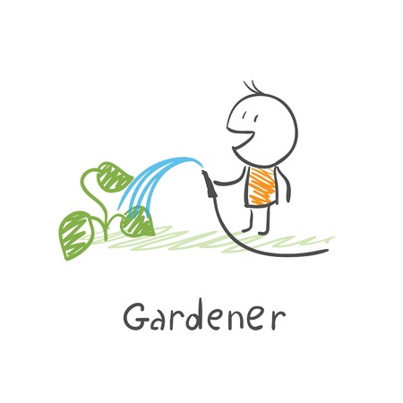 Gardener watering plants Vector