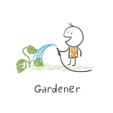 plant stand: Gardener watering plants