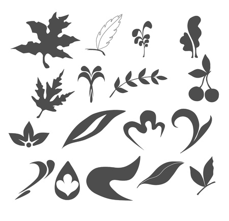 Collection of Leaf nature icons Vector