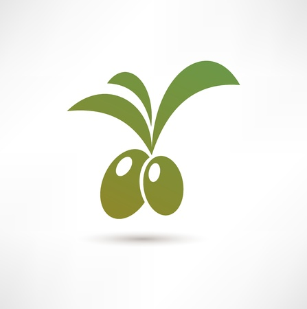 olive tree isolated: Olive icon