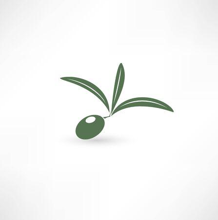 Olive icon Фото со стока - 15795932